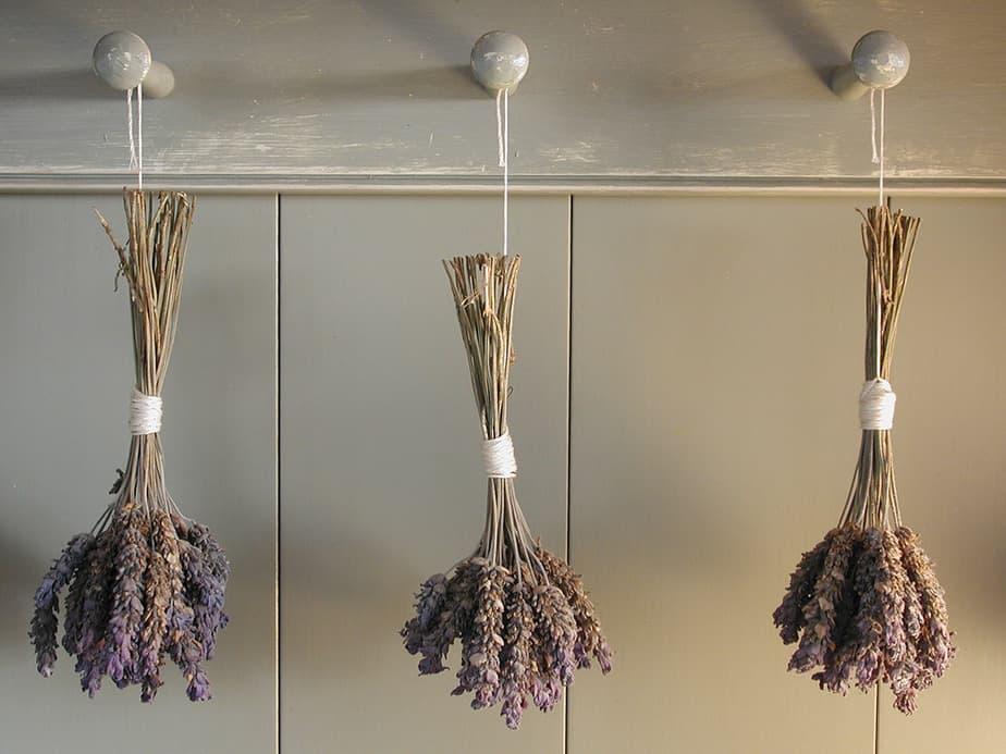 עיצובים קיימים במטבח פרובנס